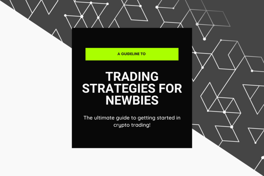 Crypto Trading for Newbies | A Guide to Trading in Cryptocurrencies